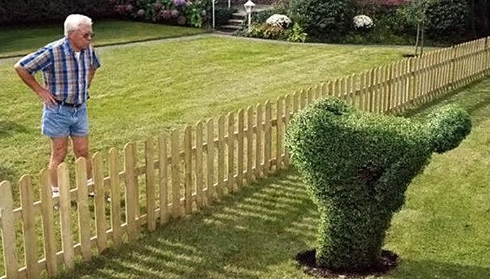 голый сосед в саду фото